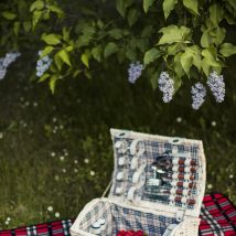 Best of British - Picnics